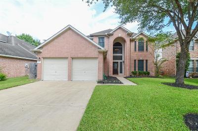 Katy Single Family Home For Sale: 2315 Oak Sand Drive
