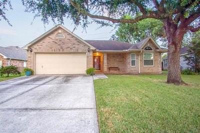 Pearland Single Family Home For Sale: 2746 S Peach Hollow Circle