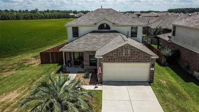Tomball Single Family Home For Sale: 23222 Red Birch Court