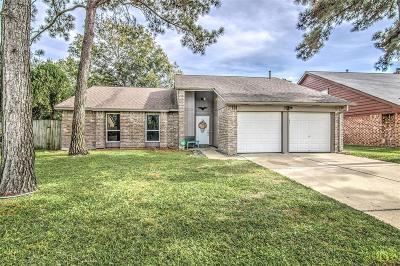 Katy Single Family Home For Sale: 2174 Fort Laramie Drive