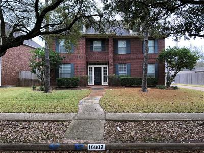 Sugar Land Single Family Home For Sale: 16807 Rustic Colony Drive
