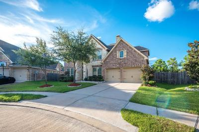 Shadow Creek Ranch Single Family Home For Sale: 13503 Silent Walk Drive