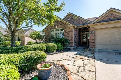 Single Family Home For Sale: 11010 Jadestone Creek Lane