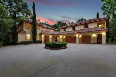 Magnolia Single Family Home For Sale: 36318 Post Oak Circle