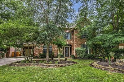 The Woodlands Single Family Home For Sale: 21 Villa Canyon Place