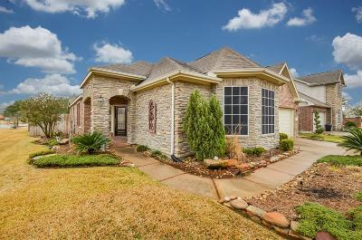 Tomball Single Family Home For Sale: 9118 Little Green Street