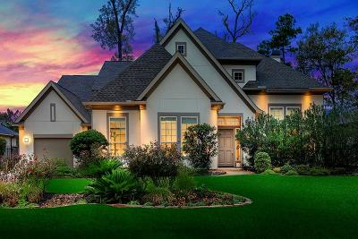 The Woodlands Single Family Home For Sale: 10 N Fremont Ridge Loop