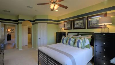 Katy Single Family Home For Sale: 2507 Stonebury Falls Court