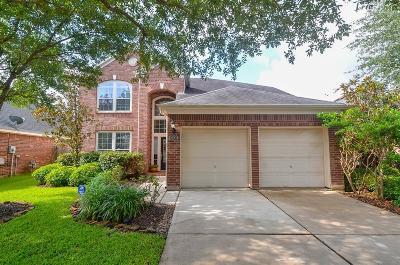 Katy Single Family Home For Sale: 28203 28203 Everett Knolls