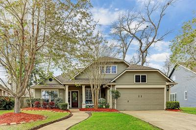Sugar Land Single Family Home For Sale: 1507 Fairview Drive