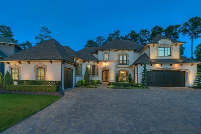 Shenandoah Single Family Home For Sale: 74 Pine Brook Court