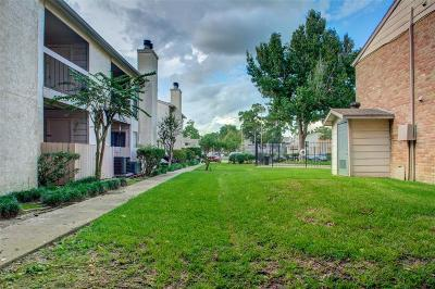 Houston Condo/Townhouse For Sale: 17331 Red Oak Drive #38