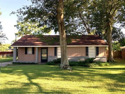 Tomball Rental For Rent: 119 Anna Street