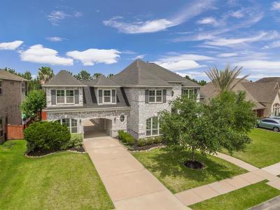 Houston Single Family Home For Sale: 12203 Laguna Terrace Drive