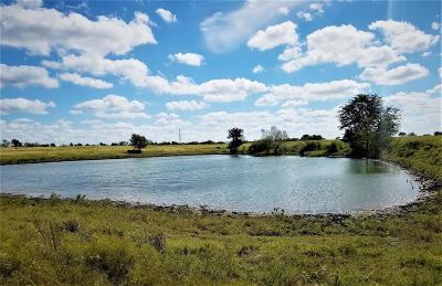Washington County Country Home/Acreage For Sale: 4750 Hwy 290 E