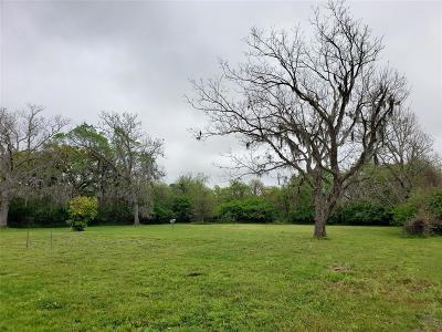 Brazoria Residential Lots & Land For Sale: 316 Red Oak Street
