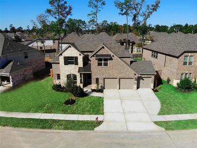 Houston Single Family Home For Sale: 13907 Amelia Lake Lane