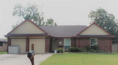 Lake Jackson Single Family Home For Sale: 207 Silverbell Circle