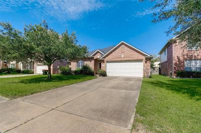 Houston Single Family Home For Sale: 16614 New Market Lane
