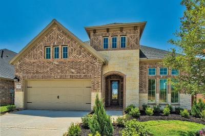Katy Single Family Home For Sale: 6919 Thomas Trail