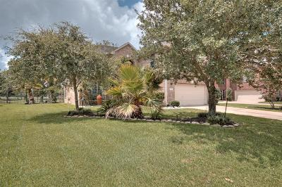 Pearland Single Family Home For Sale: 3214 River Birch Drive