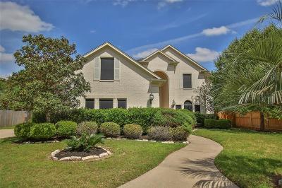 Single Family Home For Sale: 11002 Silverado Trace Drive Drive