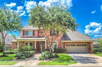 Sugar Land Single Family Home For Sale: 1723 Ravenel Lane