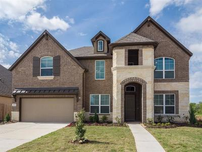 Riverstone Single Family Home For Sale: 3926 Dogwood Canyon Lane