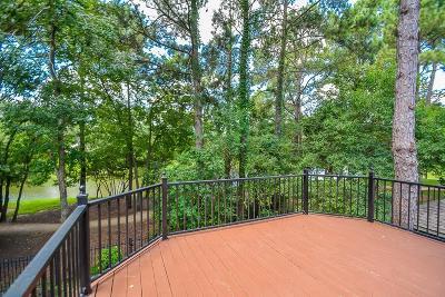 Houston Single Family Home For Sale: 8743 Serenade Lane