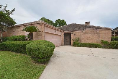 Houston Single Family Home For Sale: 1319 Ambergate Drive