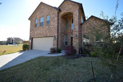 Houston Single Family Home For Sale: 19519 Flatrock Park Lane