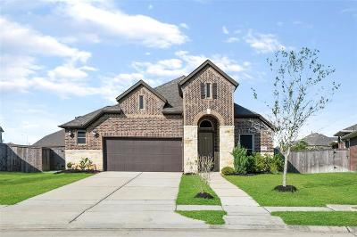 Pearland Single Family Home For Sale: 2306 Grayson Valley Lane