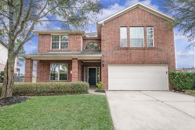 Houston Single Family Home For Sale: 10742 Lyndon Meadows Drive