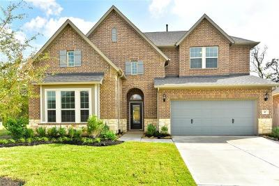 Tomball Single Family Home For Sale: 9307 Victory Canyon