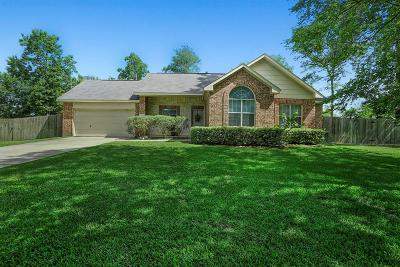 Magnolia Single Family Home For Sale: 25270 Big Horn Lane