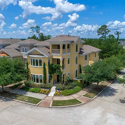 East Shore, East Shore/The Woodlands, The Woodlands East Shore Single Family Home For Sale: 63 Olmstead Row
