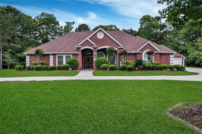 Huffman Single Family Home For Sale: 915 Lago Trace Drive