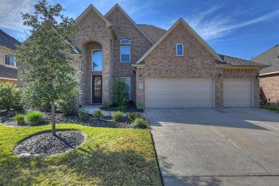 Spring Single Family Home For Sale: 25215 Gaddis Oaks Drive