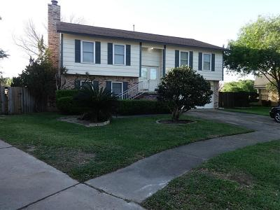 Katy Single Family Home For Sale: 19950 Gatling Court