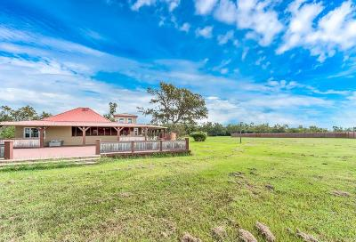 Colorado County Farm & Ranch For Sale: 5998 Verm Road