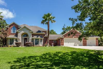 Montgomery Single Family Home For Sale: 349 Ridgelake Scenic Drive