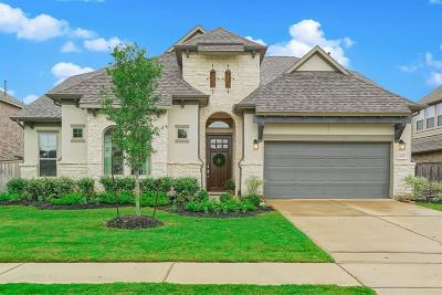 Tomball Single Family Home For Sale: 8914 Havenfield Ridge Lane
