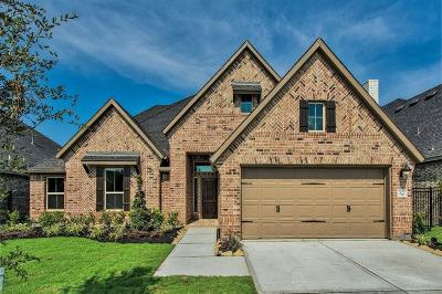 Rosenberg TX Single Family Home For Sale: $348,888