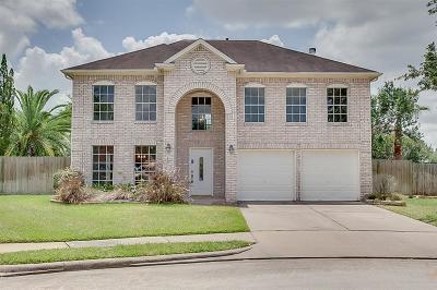 Katy Single Family Home For Sale: 21007 Creek Edge Court