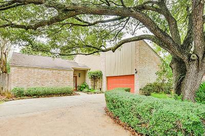 Houston Single Family Home For Sale: 12102 Briar Forest Drive