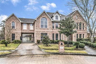 Houston Single Family Home For Sale: 13910 Cloudcap Court
