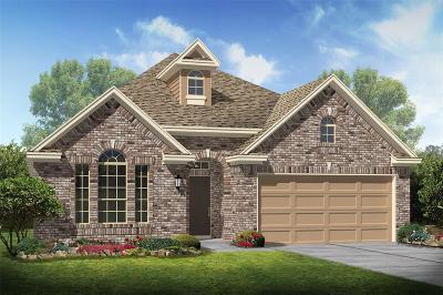 Alvin Single Family Home For Sale: 5183 Echo Falls Drive