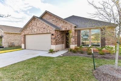 Rosenberg Single Family Home For Sale: 2607 Patricia Crossing