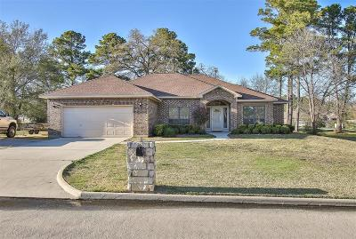 Willis Single Family Home For Sale: 13077 Point Aquarius Boulevard