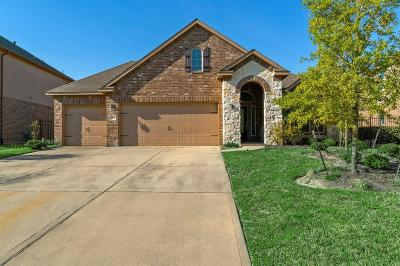 Tomball Single Family Home For Sale: 35 S Greenprint Circle